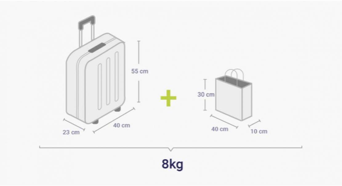 手荷物の詳細
