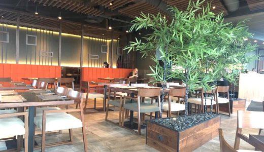 【エストニアで本格的な日本食】タリンにあるWashoku Story に行ってきた!
